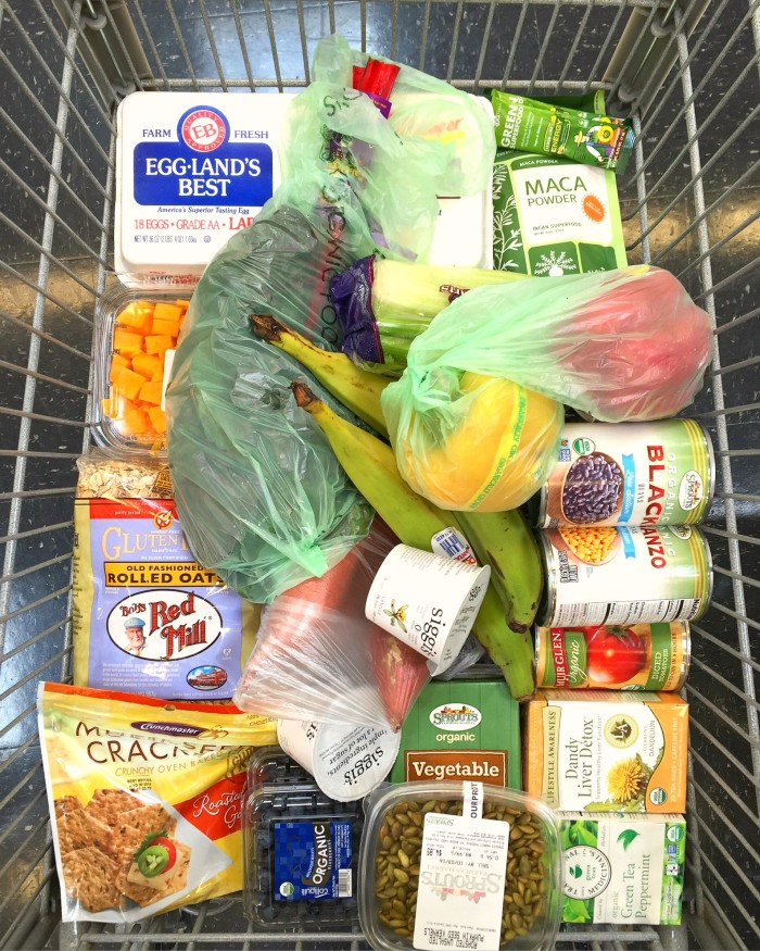 Skinny Girl's Shopping Cart