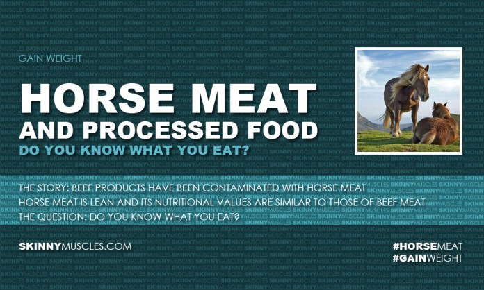 Horse meat and processed food – do you know what you eat?