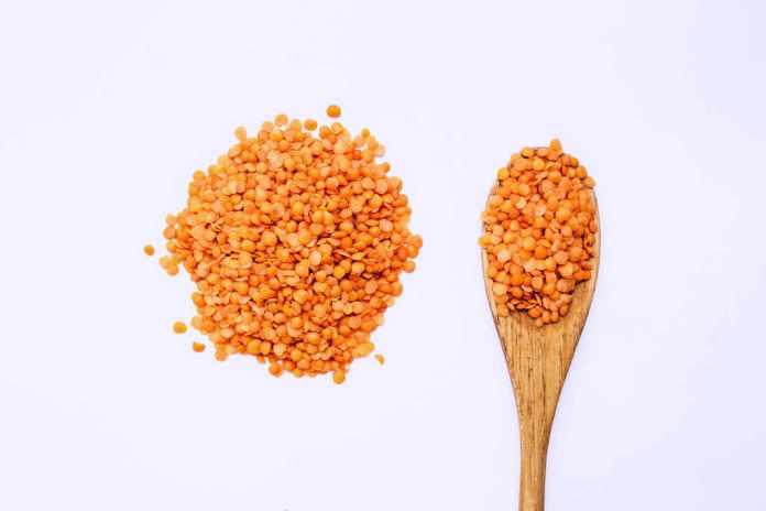lentils, vegan protein sources