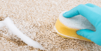 Cleaning Tip Best, Cheapest Carpet Spot Remover