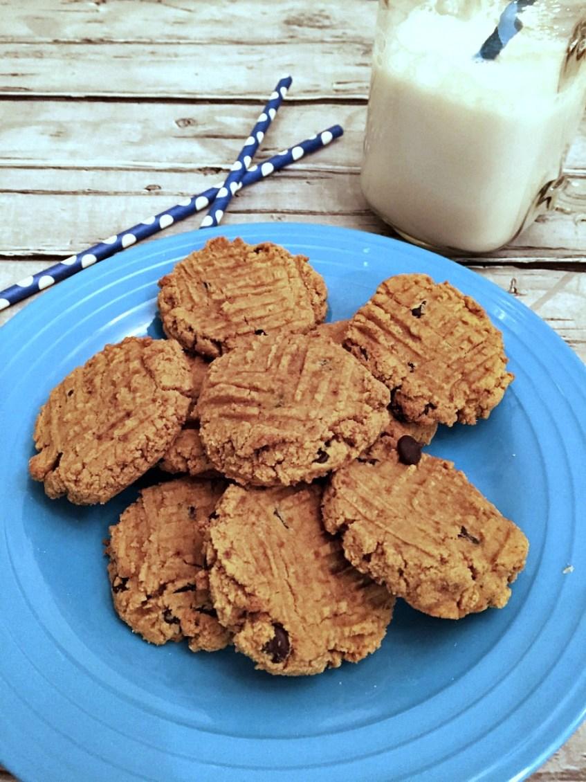 CoconutGlutenFreeChocolateChipCookies4