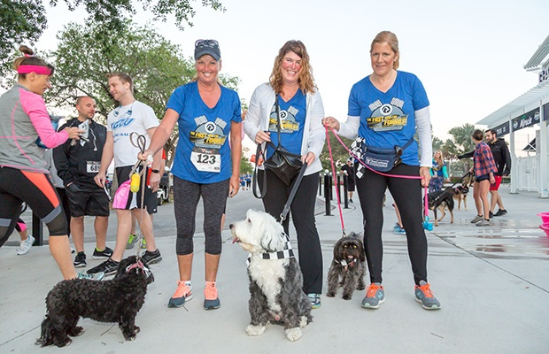 Fun Runs with Dogs: The Fast and the Furriest 5K