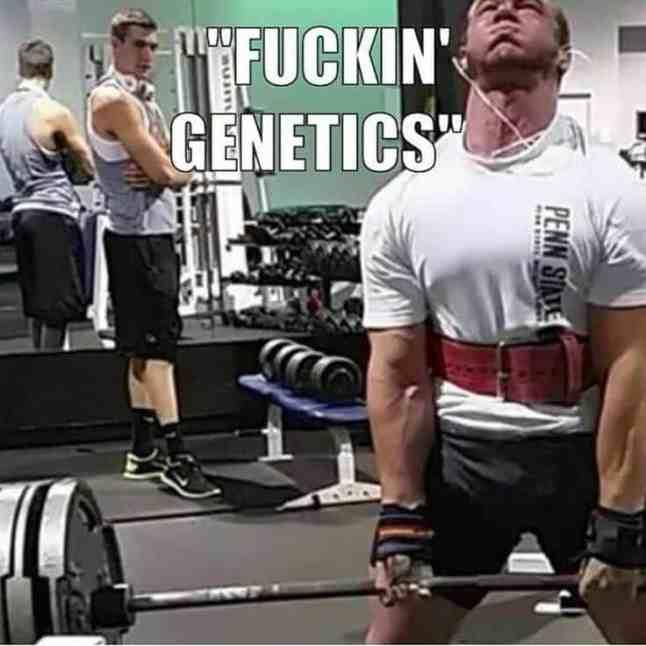 genetics in bodybuilding