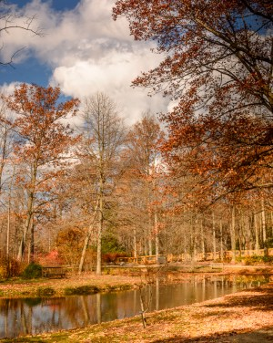 Sherwin Pond