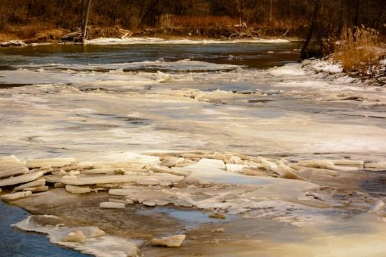 2016_01_30_Trailwalk_Chagrin River Park_0070