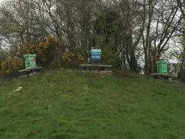 Three high density polystyrene beehives (from beehivesupplies.co.uk) are at the entrance of the Eden project