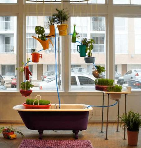 hydroponic-systems-round-up-fun-store-front-aquaponic-system