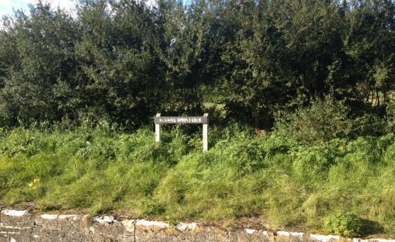 Boxwell Spring Lock