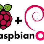 Raspbian OS Logo