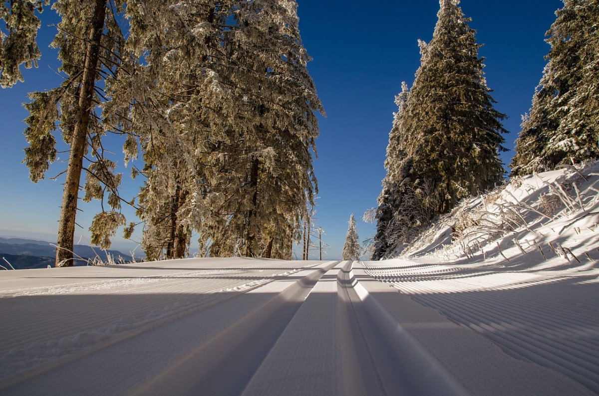 A Definitive Guide to the Best Cross Country Skis