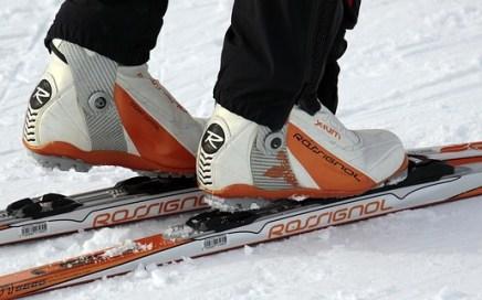 waxless cross country skis