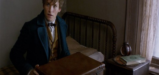 """Things That Excite Me About The Upcoming """"Fantastic Beasts"""" Movie 