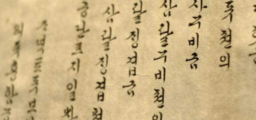 Why Did I Study The Korean Language | Skip The Flip
