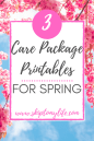Get these spring care package free printables and have fun sending your love.