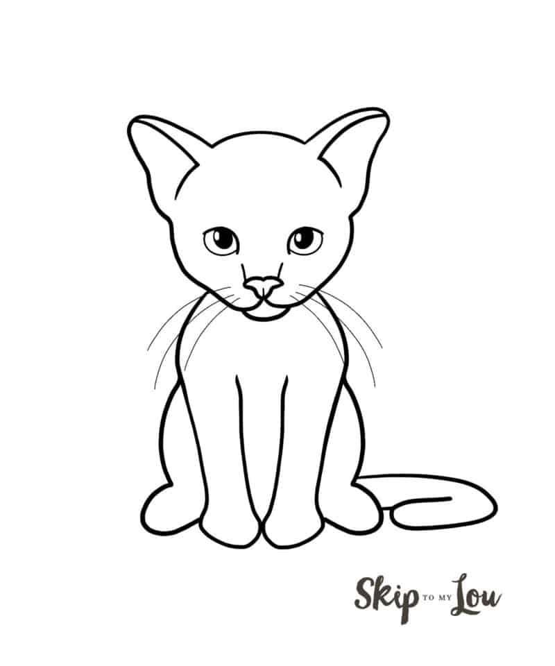 Basic Cat Drawing : basic, drawing, Drawing, Tutorial