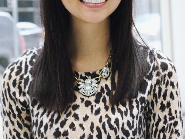 Statement Necklace & Leopard Sweater