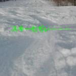 スキーが難しい理由がわかった。滑りながら新しい運動を取り入れるからだ。
