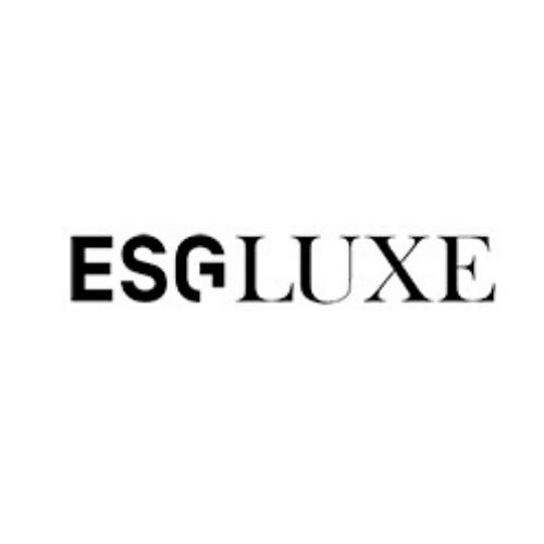 société de conseil ski européen consultant commercial