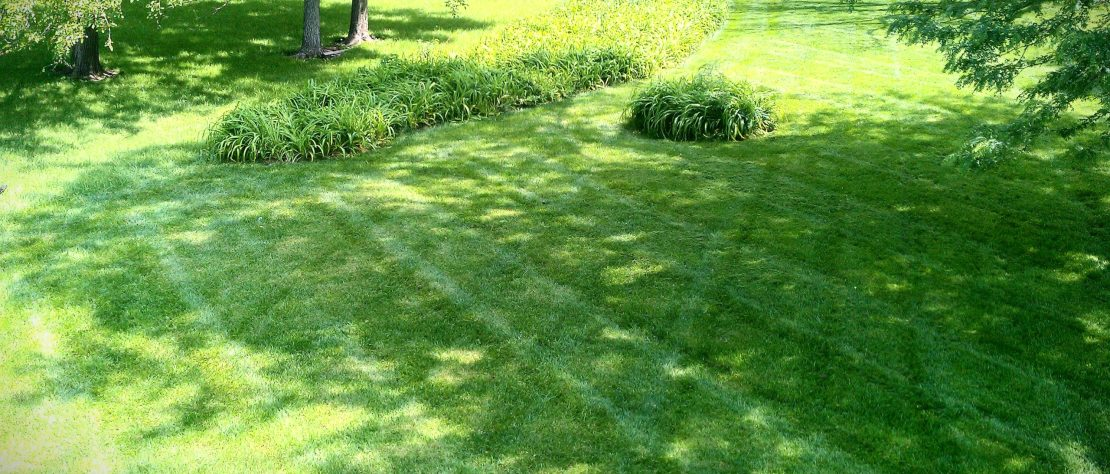 Grass Landscape Lawn care in kansas city sk lawn care lawn care lawn landscape contractor fertilizer fertilize kansas city workwithnaturefo