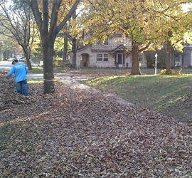 leaf-removal-lawn-cleanup-landscape-contractor-Kansas-City