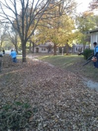 leaf-removal-clean-up-Kansas-City-Overland-Park-Leawood-Olathe