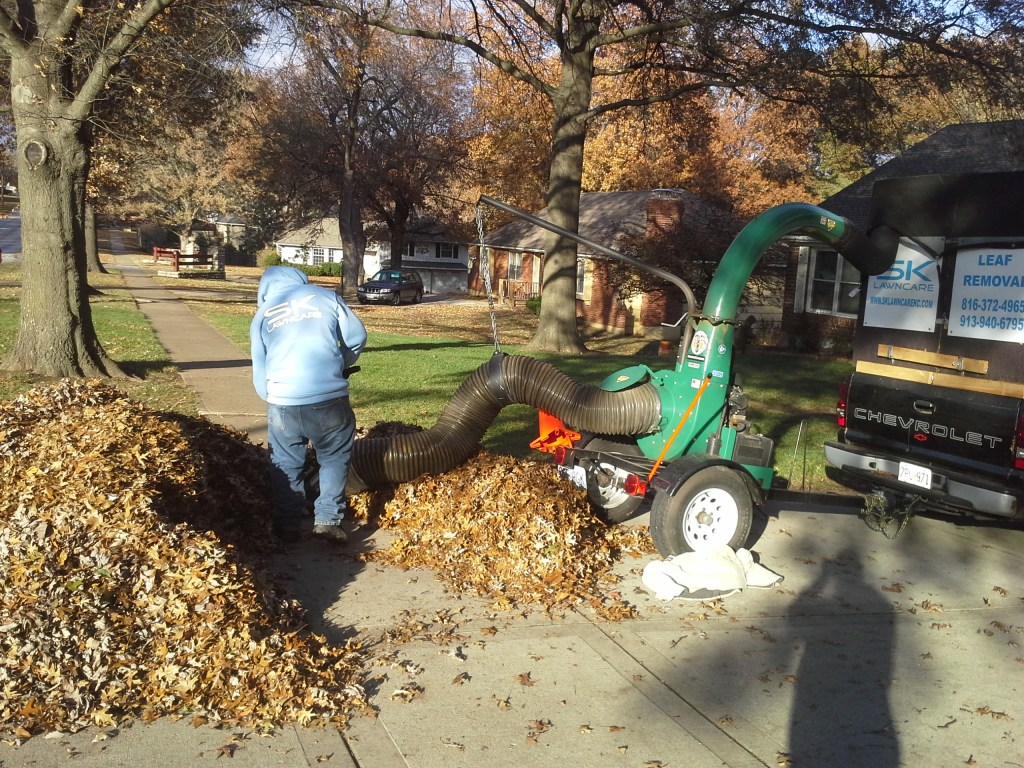 leaf-removal-lawn-clean-up-removal-Kansas-City-remove-leaves