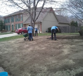 landscape-maintenance-Kansas-City-Overland-Park-lawn-care