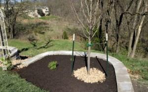 landscape-landscaping-installation-design-Kansas-City-Overland-Park