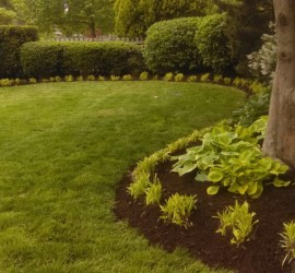 KC-Kansas-City-landscape-landscaping-design-contractor