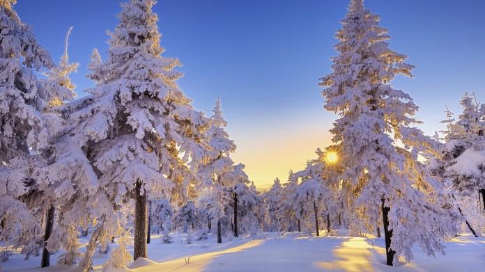 Winter-Wallpaper-HD-Widescreen