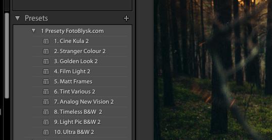 jak zapisać presety lightroom