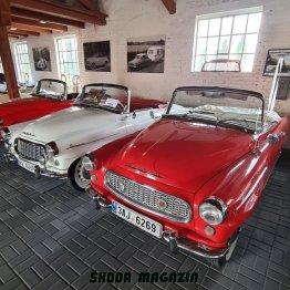 2020-srpen-cabrio-gallery-dobrenice- (14)