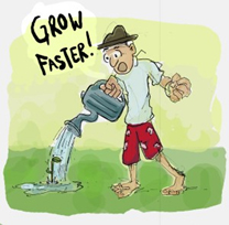 grow-faster