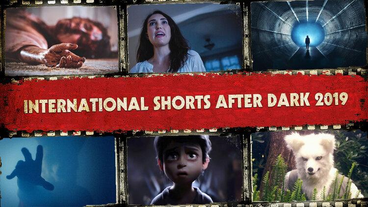 International Shorts After Dark