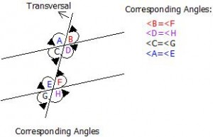 Types and Properties of Angles