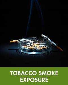 Tobacco Smoke Exposure
