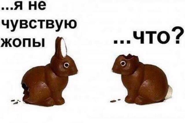 Для чего причина вы? | Домашнее издательство Skrebeyko