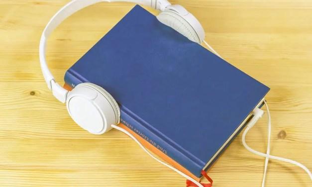 100 ord om ljudböcker