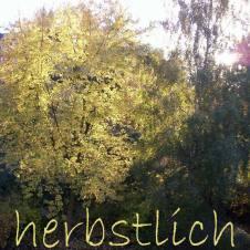 0909-herbstlich-2060