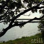 0601a-still-LangerEric268