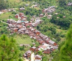 damian (1)