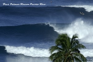 Surf & Stay in Puerto Rico