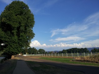 Burning hot summer over the racecourse