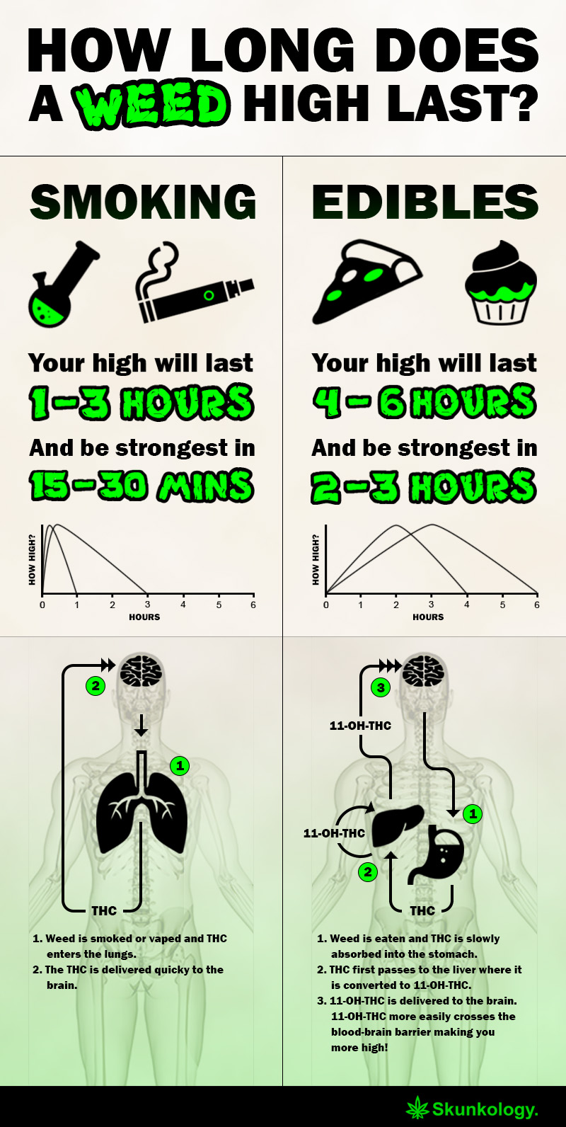 How Long Does a Weed High Last  Infographic  skunkologycom