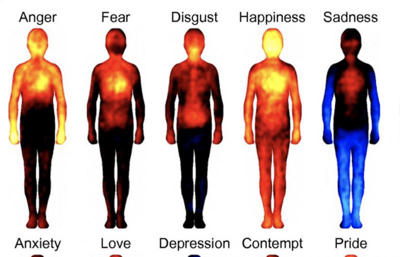 Jak wzmocnić odporność i elastyczność psychiczną?