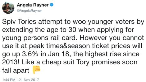 rayner rail