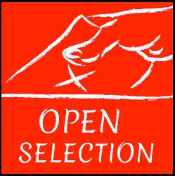 open selec.png