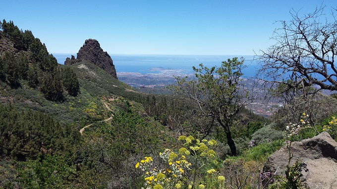 tour_Gran_Canaria_excursions_private_VIP_guided_Sky_Rebels