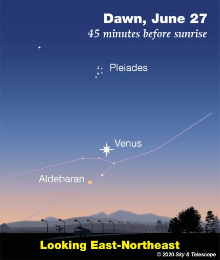 Venus and stars low in the dawn, late June 2020