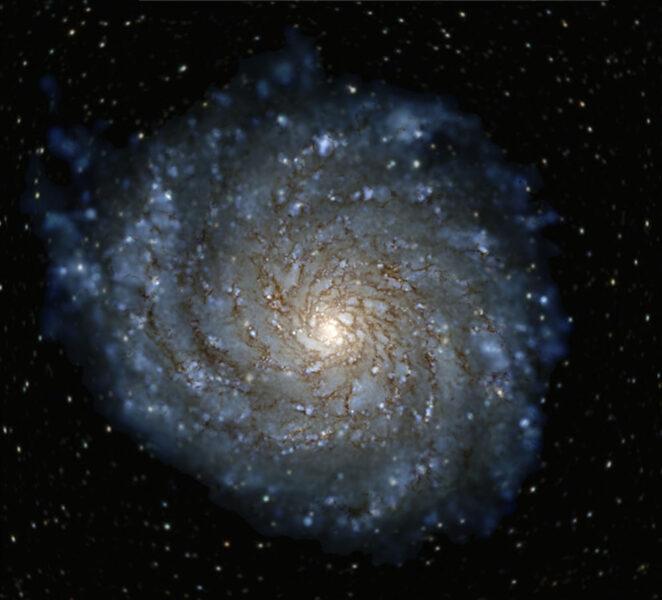 Simulated Milky Way-like galaxy